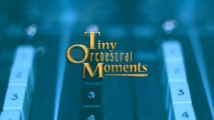 Tiny Orchestral Moments - Documentary Logo